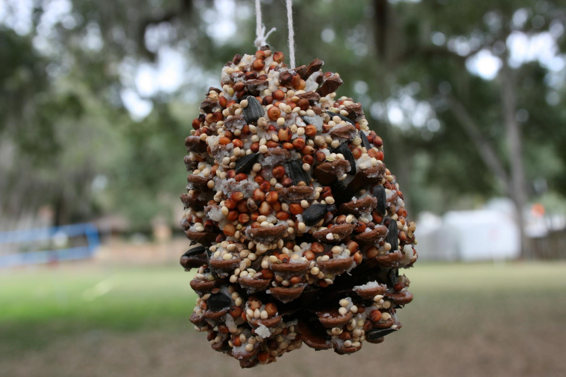 Pine Cone Bird Seed Feeder