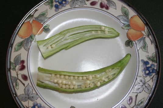 okra for seed