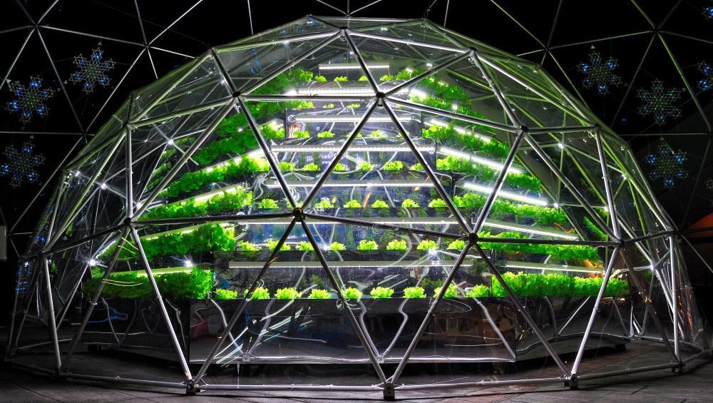 hydroponic-gardening1